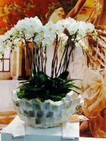 Artisan fleuriste à Nice